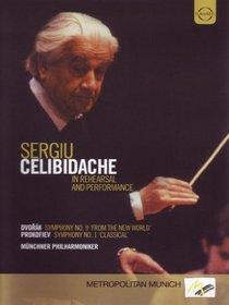 Sergiu Celibidache in Rehearsal & Performance