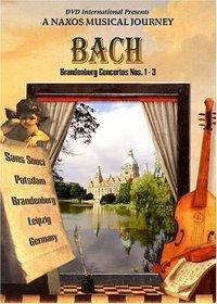 Bach - Brandenburg Concertos Nos. 1-3 - A Naxos Musical Journey