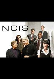 NCIS: Season Eight