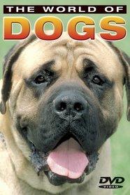The World of Dogs: Basic Dog Training