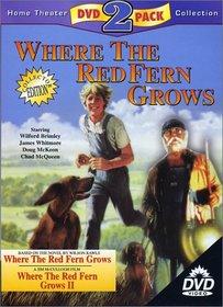 Where the Red Fern Grows & Where The Red Fern Grows II (2-Pack)
