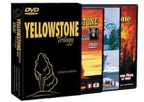 Yellowstone National Park DVD Collectors Edition (3 DVD Set: Russ Finley's Winter in Yellowstone, Yellowstone Aflame, The Complete Yellowstone)