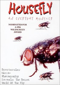 Housefly: An Everyday Monster