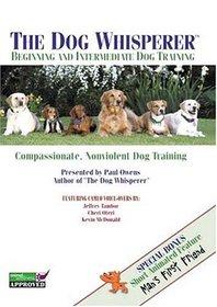 Beginning and Intermediate Dog Training