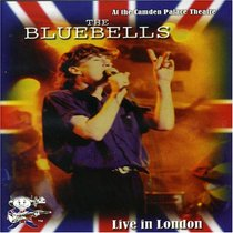 Bluebells: Live in London