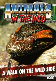Animals in the Wild: A Walk on the Wild Side