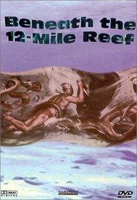 Beneath 12 Mile Reef