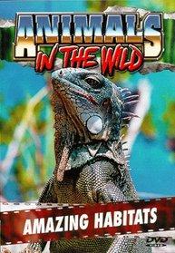 Animals in the Wild 4: Amazing Habitats