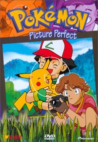 Pokemon - Picture Perfect (Vol. 17)