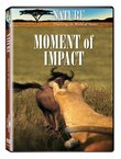 Nature: Moment of Impact