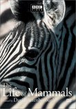 The Life of Mammals, Vol. 1