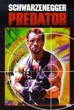 Predator (Ws)