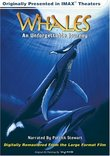 Whales - An Unforgettable Journey (Large Format)