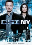 CSI: NY - The Eighth Season