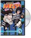 Naruto, Vol. 29