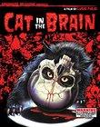 Cat In The Brain(2 Blu-rays, 1 CD)