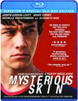 Mysterious Skin (Director's Special Blu-Ray Edition)