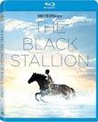 Black Stallion [Blu-ray]