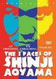 The 3 Faces of Shinji Aoyama