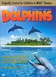 Dolphins (Large Format)