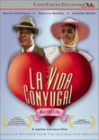 La Vida Conyugal (Married Life)