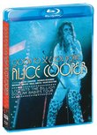 Good to See You Again Live 1973: Billion Dollar [Blu-ray]