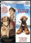 Far From Home/Fluke