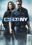 C.S.I.: NY - The Fifth Season
