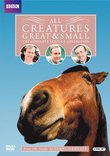 All Creatures Great & Small: The Complete Series 5 Collection (Repackage)