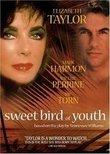Sweet Bird of Youth