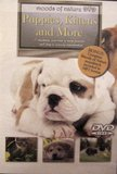 Puppies, Kittens, and More ~ Moods of Nature DVD ~