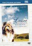 Lassie DVD NTSC Po Polsku Region 1