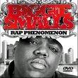 Notorious B.I.G.: Biggie Smalls - Rap Phenomenon