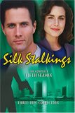 Silk Stalkings - The Complete Fifth Season