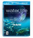 Water Life: The Big Blue [Blu-ray plus DVD and Digital Copy]