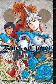 Black Clover, Vol. 12