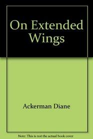 On Extended Wings : An Adventure in Flight