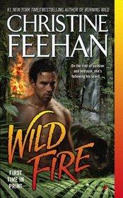 Wild Fire (Leopard, Bk 4)