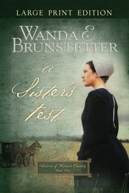 A Sister's Test (Holmes County Series #2)
