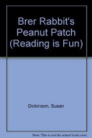 Brer Rabbit's Peanut Patch (Reading Is Fun)