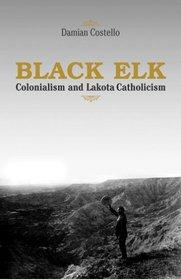 Black Elk: Colonialism And Lakota Catholicism (Faith and Culture Series)