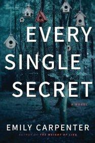 Every Single Secret: A Novel