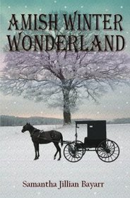 Amish Winter Wonderland (Jacob's Daughter, Bk 2)
