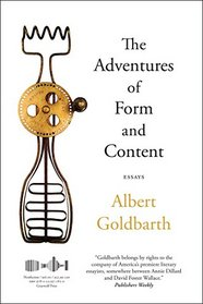 The Adventures of Form and Content: Essays