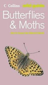 Butterflies And Moths (Wild Guide Series)