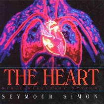 Heart: Our Circulatory System