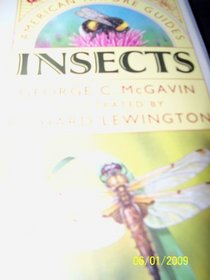 Insects (Americna Nature Guides)
