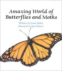 Amazing World of Butterflies and Moths