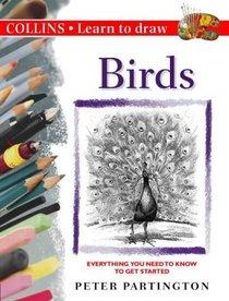 Learn To Draw-Birds
