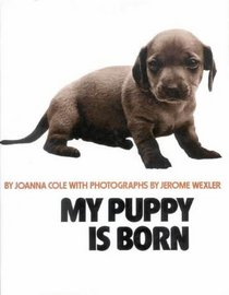 My Puppy Is Born (Four Colour)